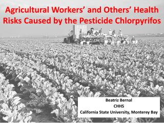 Agricultural Workers' and Others' Health Risks Caused by the Pesticide Chlorpyrifos