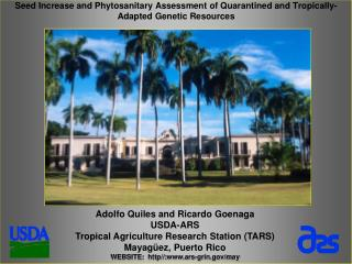 Adolfo Quiles and Ricardo Goenaga  USDA-ARS Tropical Agriculture Research Station (TARS)