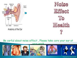 Noise E ffect To  Health ?