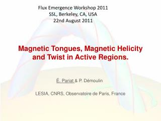 Magnetic Tongues, Magnetic Helicity and Twist in Active Regions.