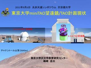東京大学 miniTAO 望遠鏡 /TAO 計画現状