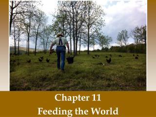 Chapter 11 Feeding the World