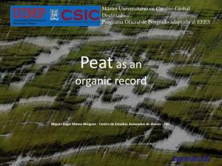 Peat  as an  organic record