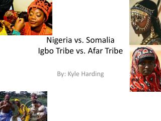 Nigeria vs. Somalia Igbo Tribe vs. Afar Tribe
