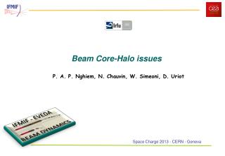 Beam Core-Halo issues