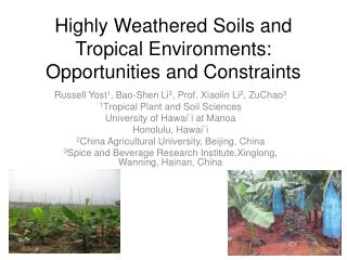 Highly Weathered Soils and Tropical Environments: Opportunities and Constraints