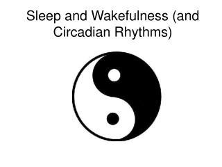 Sleep and Wakefulness (and Circadian Rhythms)