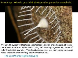 FrontPage: Why do you think the Egyptian pyramids were built?