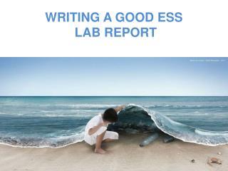 WRITING A GOOD ESS  LAB REPORT