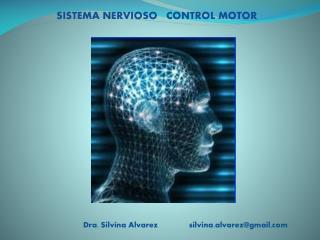 SISTEMA NERVIOSO    CONTROL MOTOR