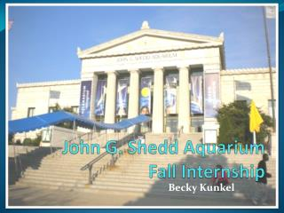 John G.  Shedd  Aquarium  Fall Internship
