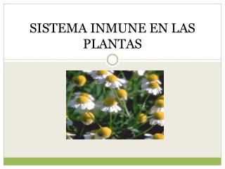 SISTEMA INMUNE EN LAS PLANTAS