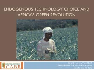E ndogenous Technology Choice and Africa�s Green Revolution
