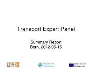 Transport Expert Panel