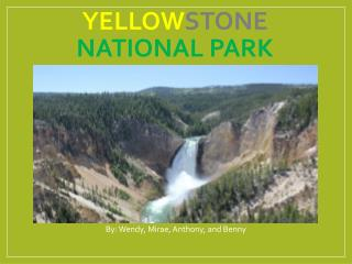 Yellow stone National Park