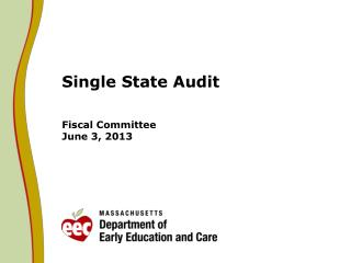 Single State Audit Fiscal Committee June 3, 2013