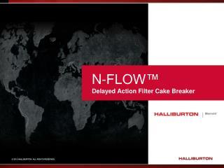 N-FLOW™ Delayed Action Filter Cake Breaker