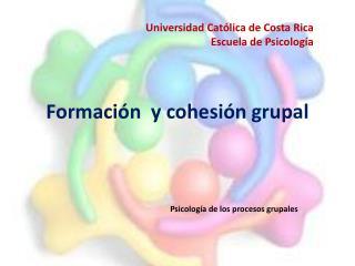Formación  y cohesión grupal