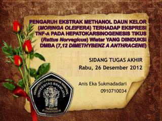 Anis  Eka Sukmadadari 0910710034