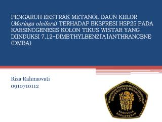 Riza Rahmawati 0910710112