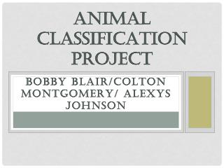 Bobby  Blair/Colton Montgomery/ alexys johnson