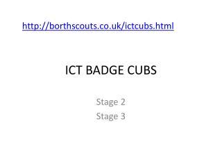 ICT BADGE CUBS