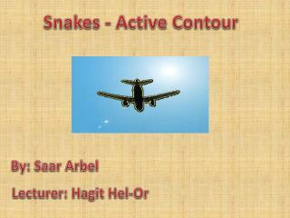 Snakes - Active Contour