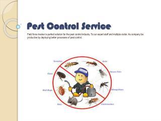 Pest ControlService