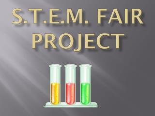 s.t.e.m . fair project
