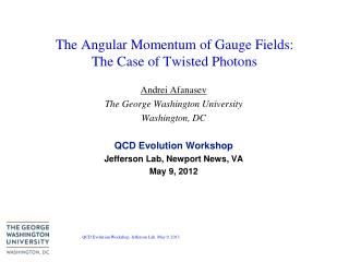 The Angular Momentum of Gauge Fields: The Case of Twisted Photons