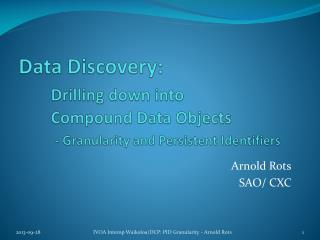 Data Discovery: Drilling down into 	Compound Data Objects - Granularity and Persistent Identifiers