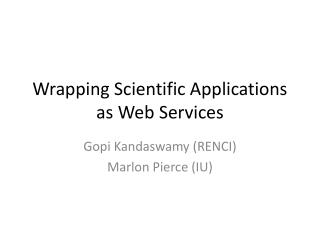 Wrapping Scientific Applications as Web Services