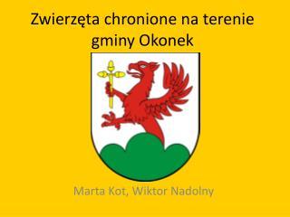 Zwierzęta chronione na terenie gminy Okonek