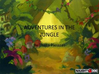 ADVENTURES IN THE JUNGLE
