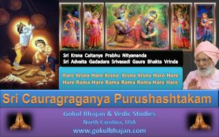 Hare  Krsna  Hare  Krsna Krsna Krsna  Hare  Hare Hare Rama Hare Rama  Rama  Rama Hare  Hare
