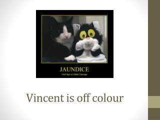 Vincent is off colour
