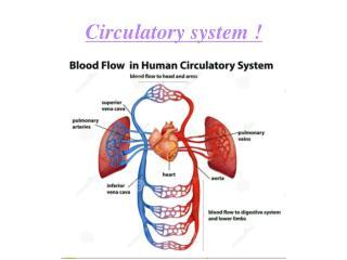 Circulatory system !
