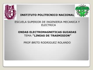 INSTITUTO POLITECNICO NACIONAL  ESCUELA SUPERIOR DE INGENIERIA MECANICA Y ELECTRICA