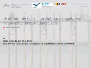 Bridging the Gap – foreløbige perspektiver vedrørende læreruddannelsen