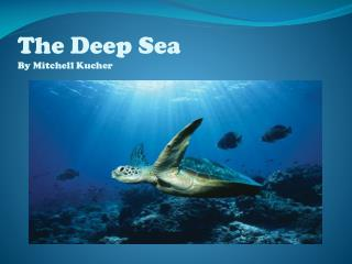 The Deep Sea By Mitchell Kucher