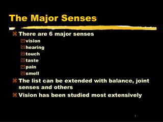 The Major Senses