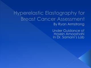 Hyperelastic Elastography for Breast Cancer Assessment