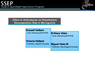 Effect of  Arthrobacter  on Polyethylene Decomposition Rate in Microgravity