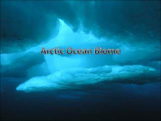 Arctic Ocean Biome