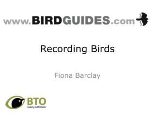 Recording Birds