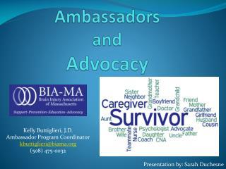 Ambassadors and  Advocacy