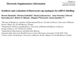 Electronic  Supplementary Information