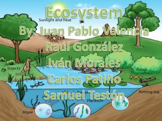 Ecosystem By : Juan Pablo Valencia Raúl González Iván Morales Carlos Patiño Samuel Testón