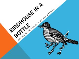 Birdhouse in a Bottle