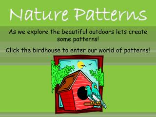 Nature Patterns